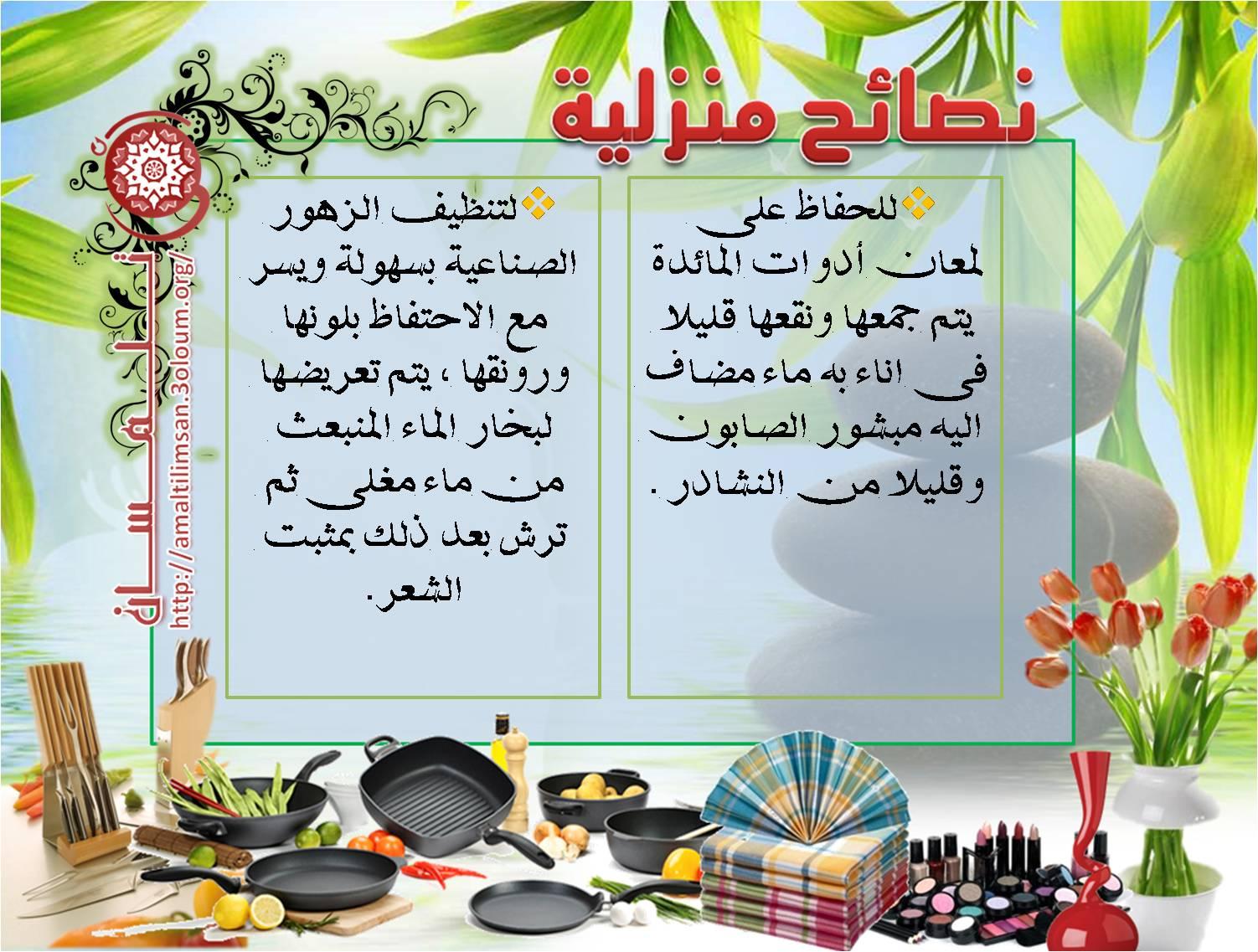 نصائح منزلية لحواء في بيتها  اليوم الثاني  2011 Image220