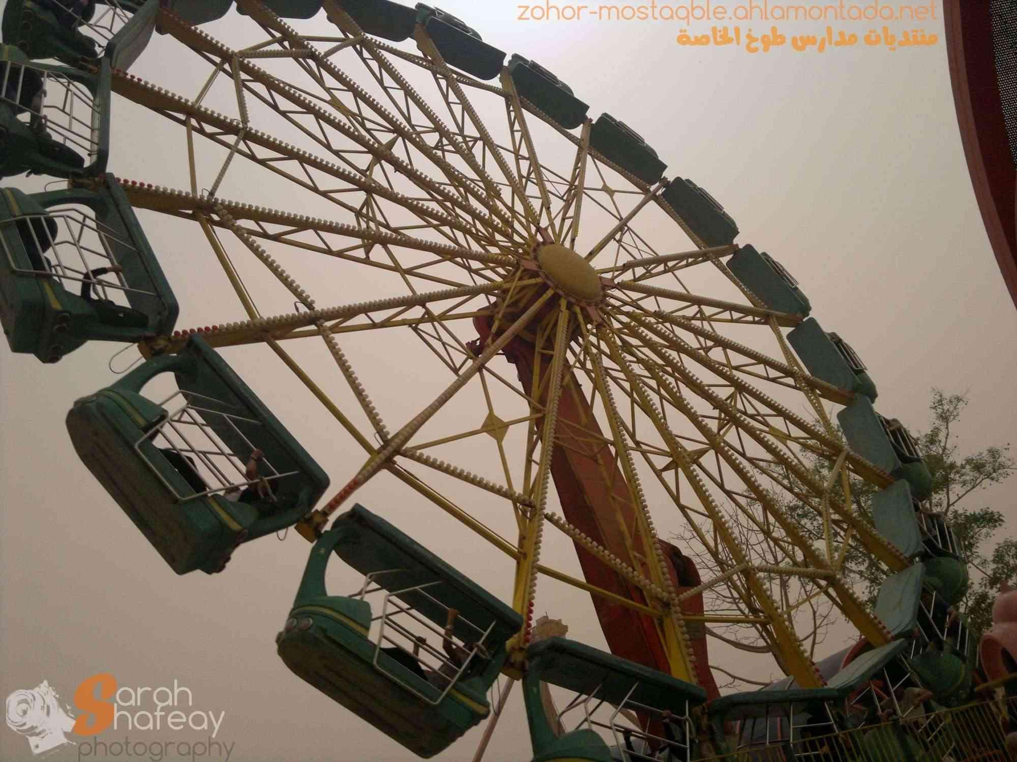 صور رحلة الصف الأول الثانوي إلى دريم بارك (18/4/2012) 2012-014