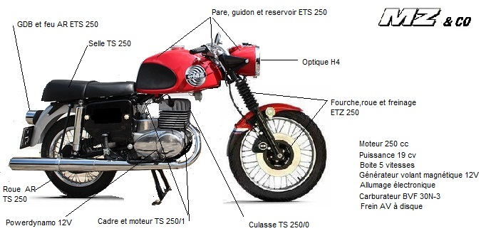 TS 250 forever Ets_di10