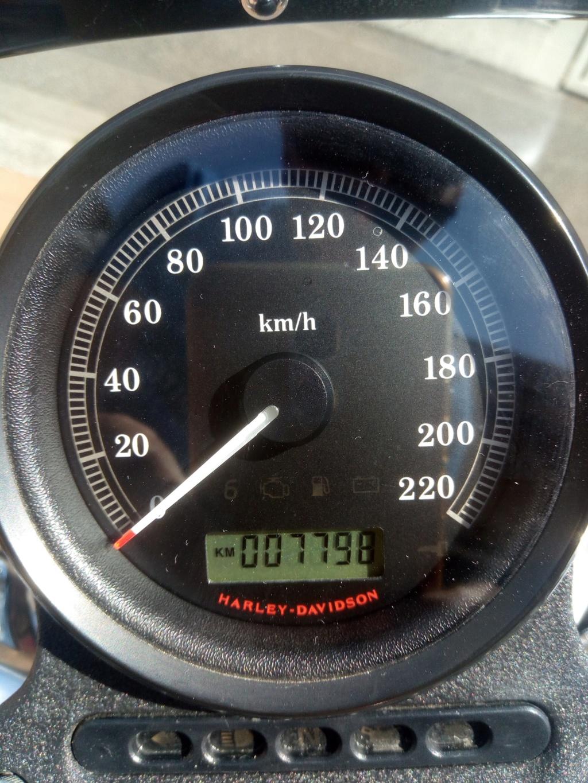 HD Sportster 883 Superlow P_202014