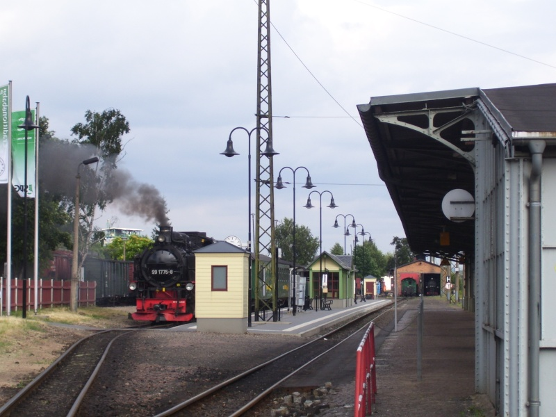 In Radebeul-Ost 100_1146