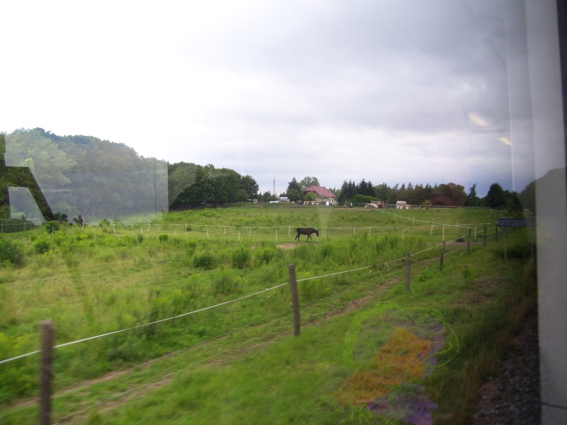 Harz-Reise 2011 100_1218