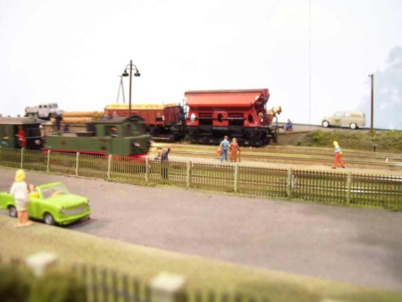 Von der Ausstellung des MEC Radebeul-Kötzschenbroda 100_5114