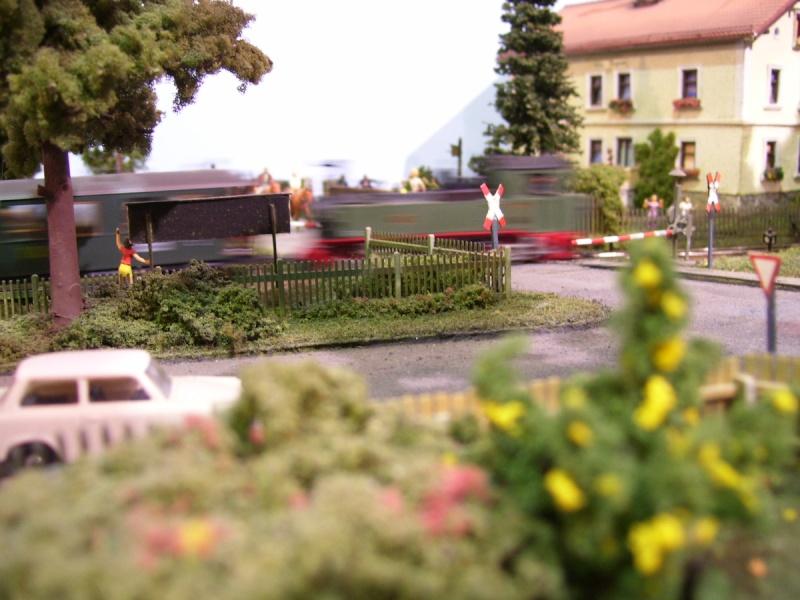 Von der Ausstellung des MEC Radebeul-Kötzschenbroda 100_5115
