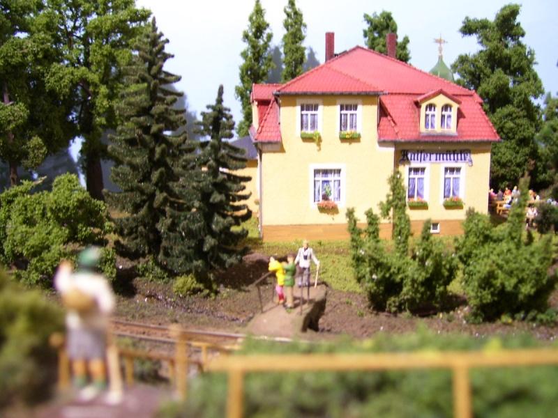 Von der Ausstellung des MEC Radebeul-Kötzschenbroda 100_5116