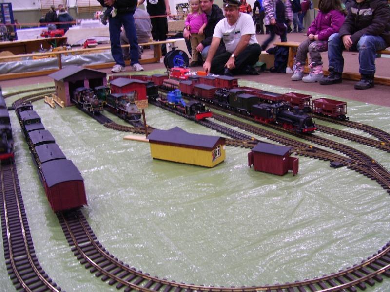 Modellbahnausstellung Freital (bei Dresden) - Seite 2 100_9323