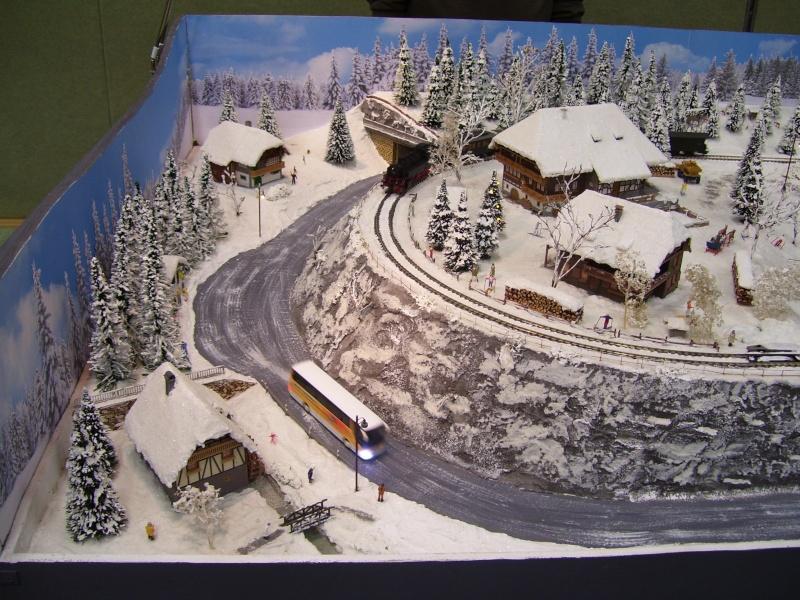 Modellbahnausstellung Freital (bei Dresden) - Seite 2 100_9326