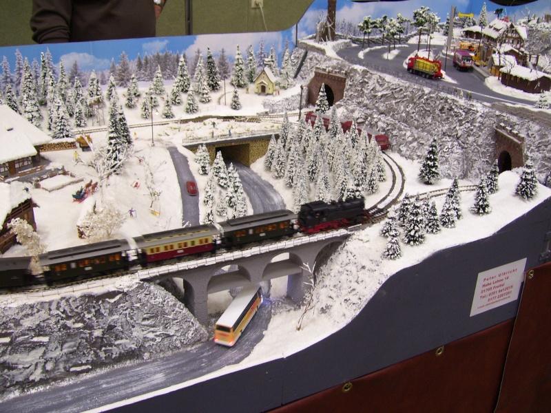 Modellbahnausstellung Freital (bei Dresden) - Seite 2 100_9330