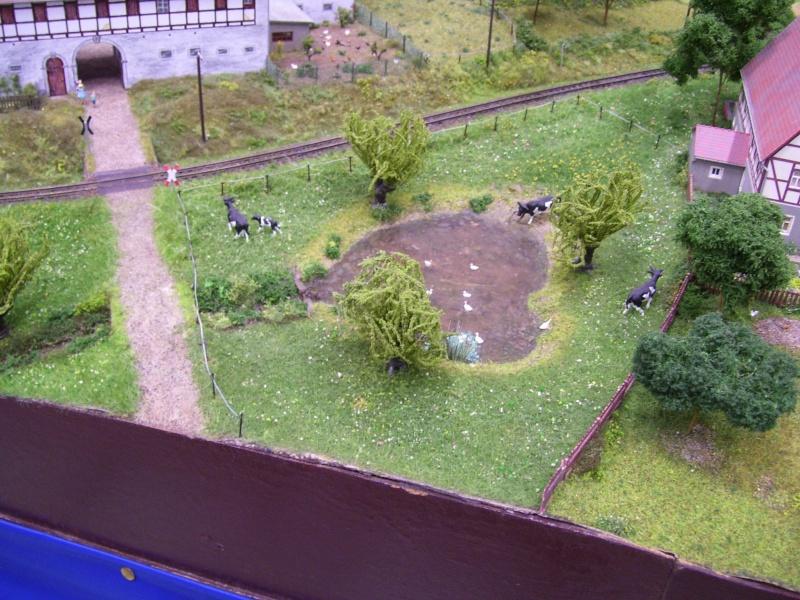 Modellbahnausstellung Freital (bei Dresden) - Seite 2 100_9339