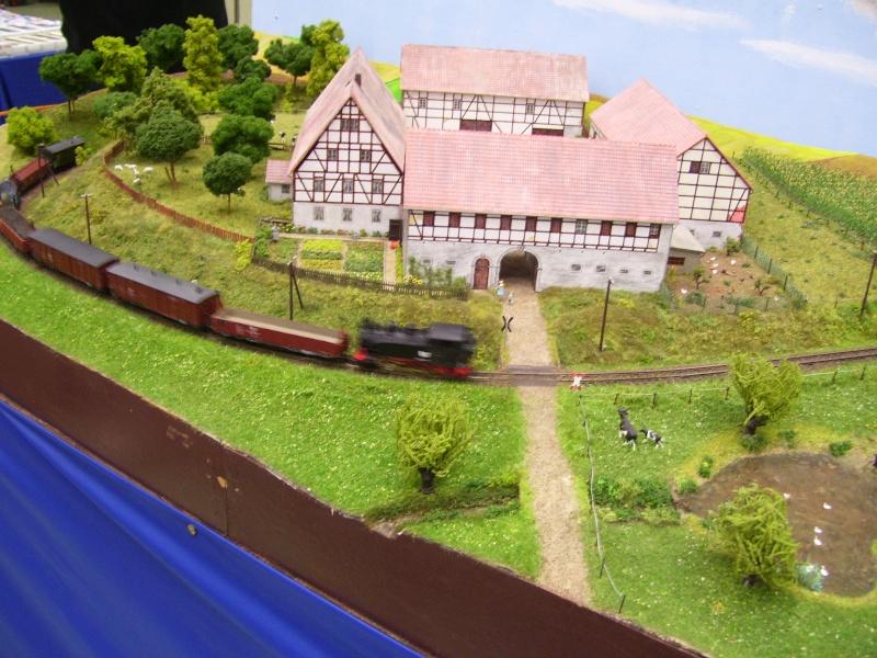 Modellbahnausstellung Freital (bei Dresden) - Seite 2 100_9340