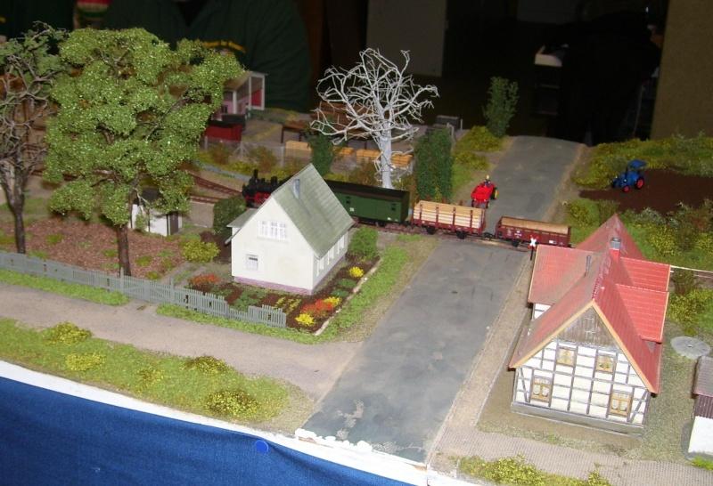 Modellbahnausstellung Freital (bei Dresden) - Seite 2 100_9342