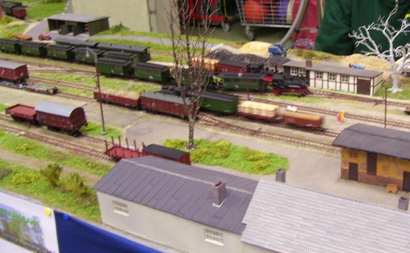 Modellbahnausstellung Freital (bei Dresden) - Seite 2 100_9343