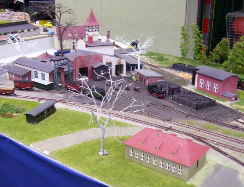 Modellbahnausstellung Freital (bei Dresden) - Seite 2 100_9344