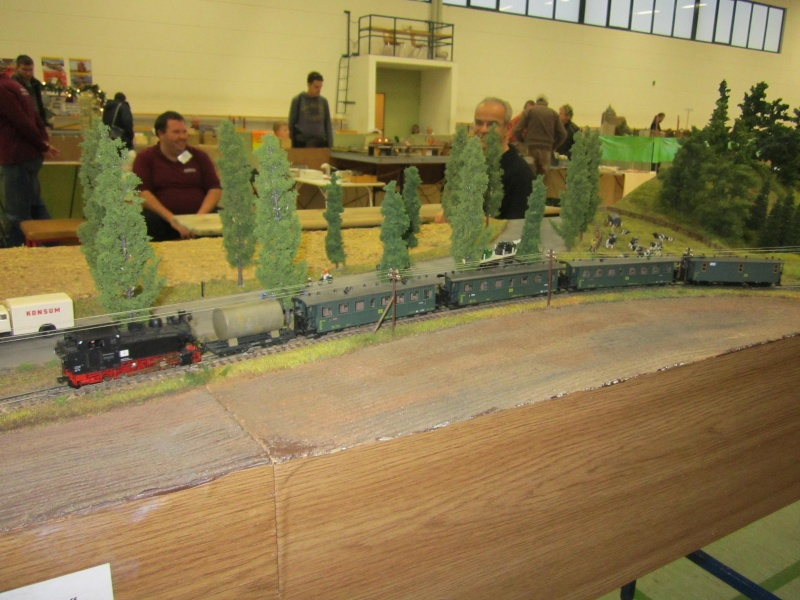 Modellbahnausstellung Freital (bei Dresden) Img_1528