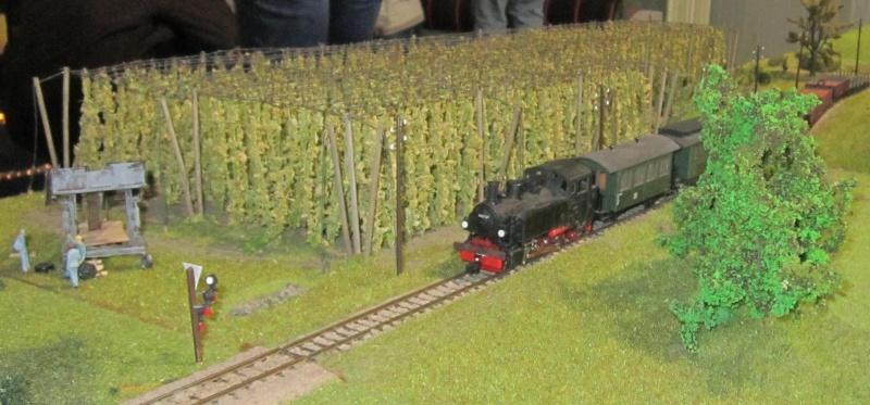 Modellbahnausstellung in Leipzig am 3.12.11 Img_1635
