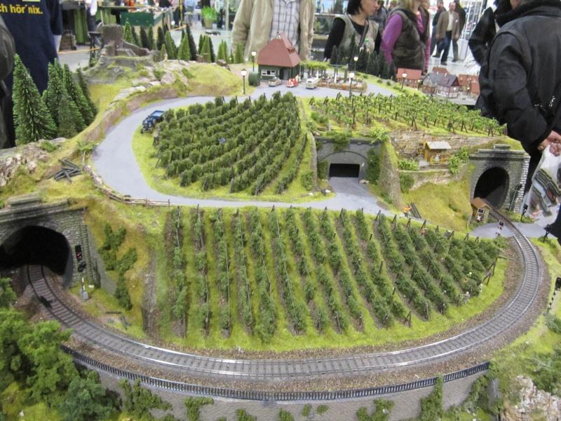 Bilder von der 8. Erlebnis Modellbahn (17.-19.2.2012) Img_3323