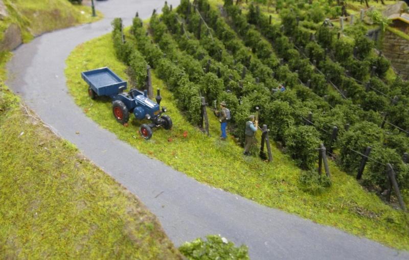 Bilder von der 8. Erlebnis Modellbahn (17.-19.2.2012) Img_3324