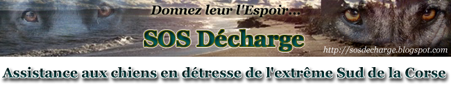 Forum SOS Décharge