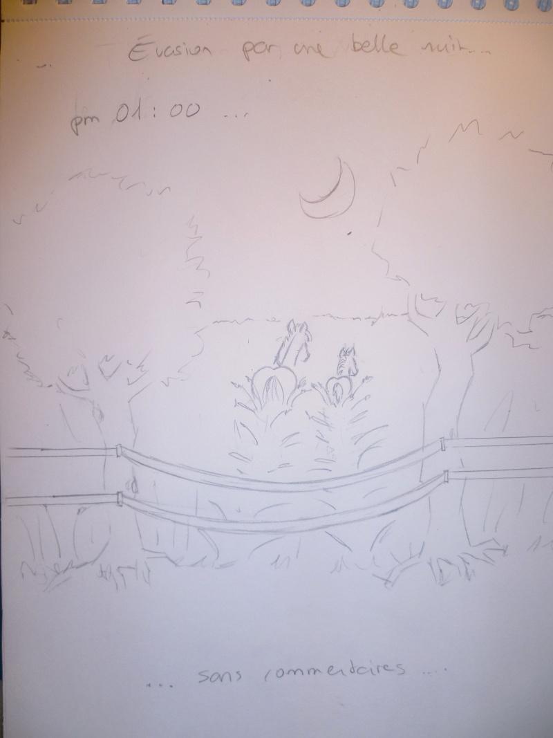 """Projet """"les aventures de Tam-tam"""" - Page 4 P1030515"""