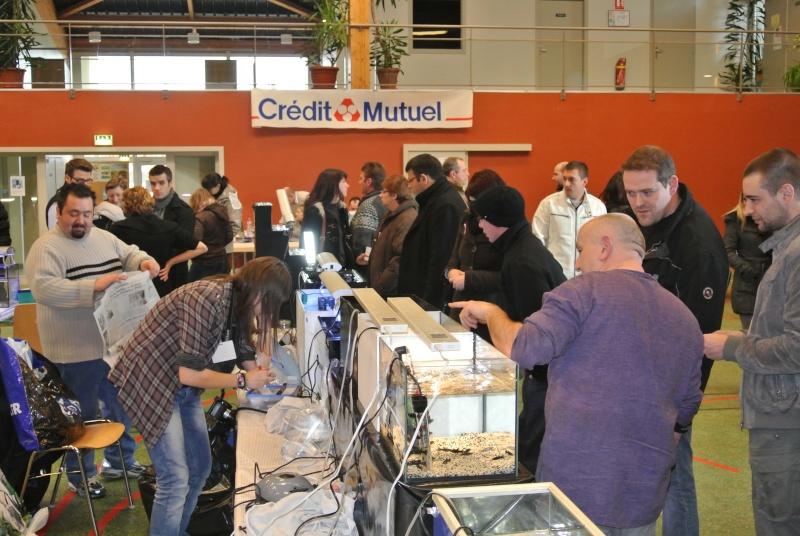 Bourse de l'AQUACLUB 96 de Saverne - 19 février 2012 - Page 3 Bourse13