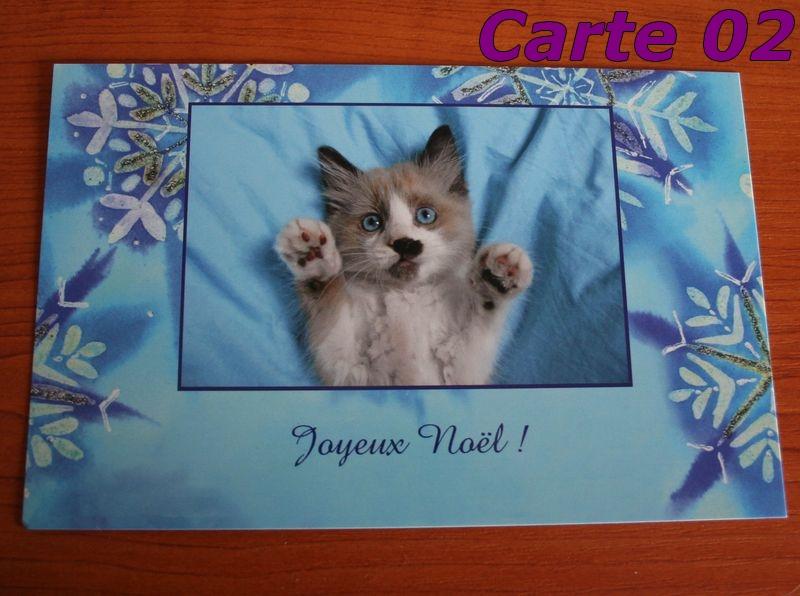 VENTES DE NOEL AU PROFIT DE SAUVADE Carte_11