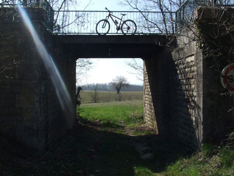 Reportage Photos - 2011 - Ligne Albi-Castres Copie_21