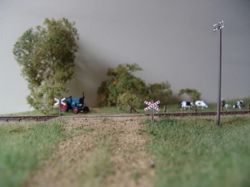 Ambiances ferroviaires - Page 3 Dsc04911