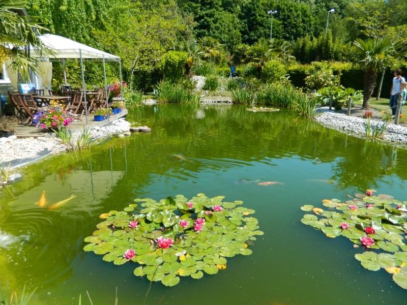 Les Jardins de LOUANNE Dscn0511