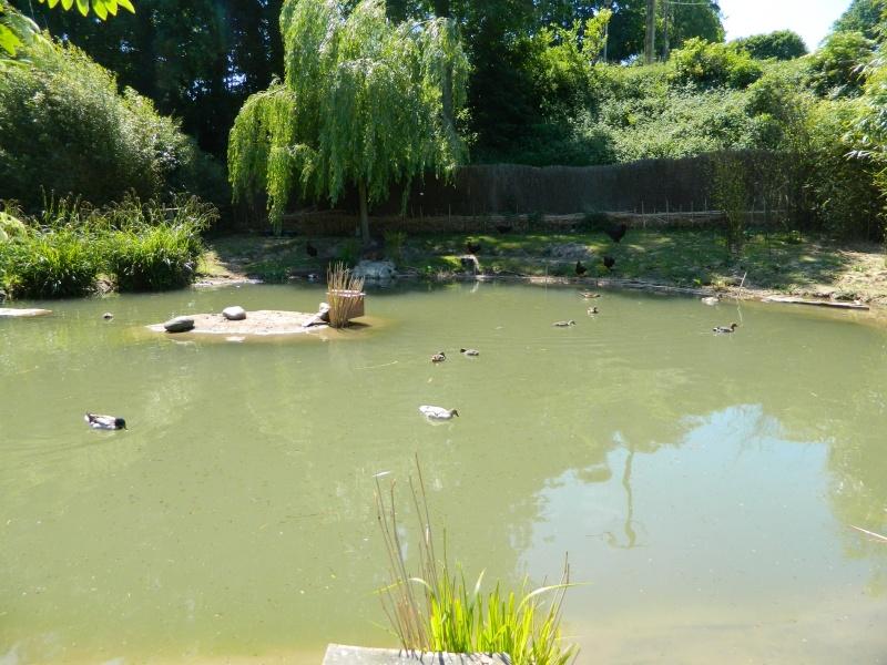 Les Jardins de LOUANNE Dscn0515