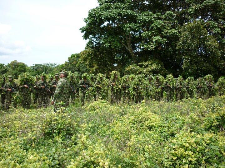 Armée Colombienne 323