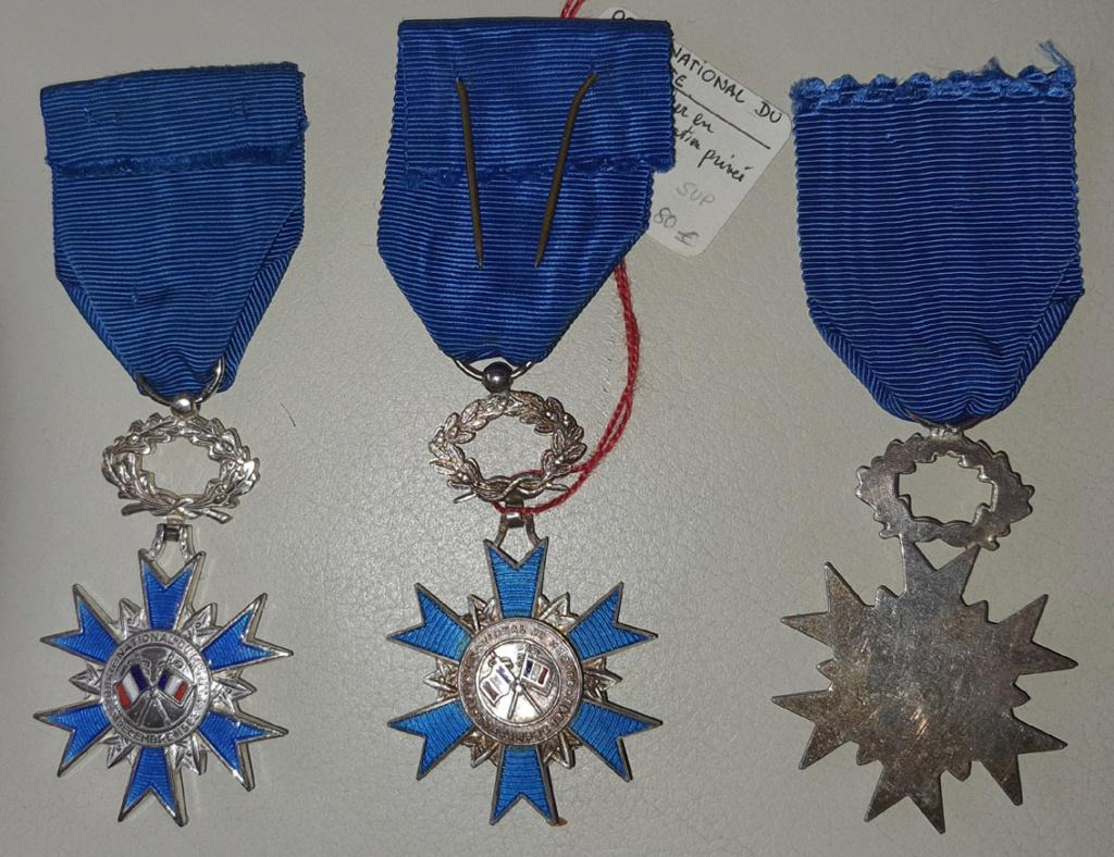 Médailles de chevalier de l'ONM 20210914