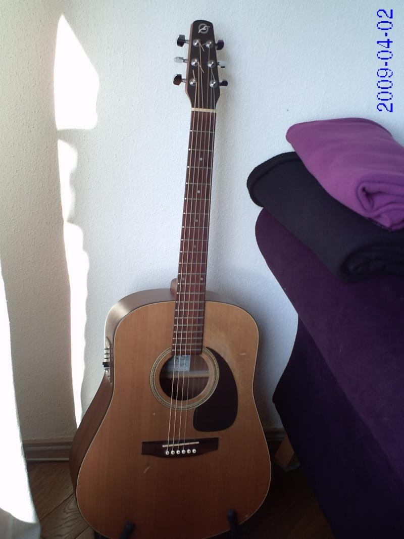 Guitars?....Let's see 'em! Pict0111