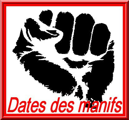 Journée Mondiale contre la Cruauté Animale 16839410