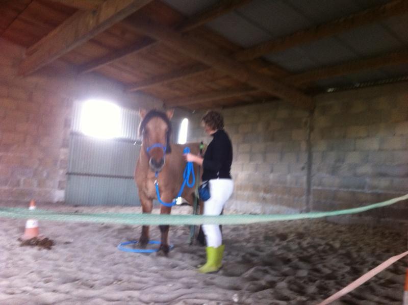 Travail à pied avec Sultane coachté par LangeDeLenfer237 Img_1041