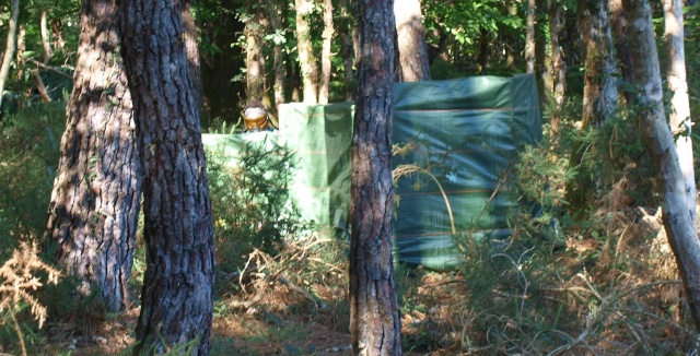 validation de la nouvelle zone boisée : attaque bunker pas la face cachée ! Capik_10