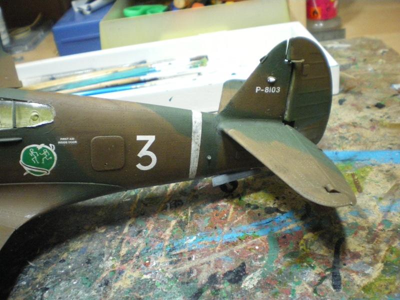 curtiss p40 b warhawk - Page 2 Imgp2193
