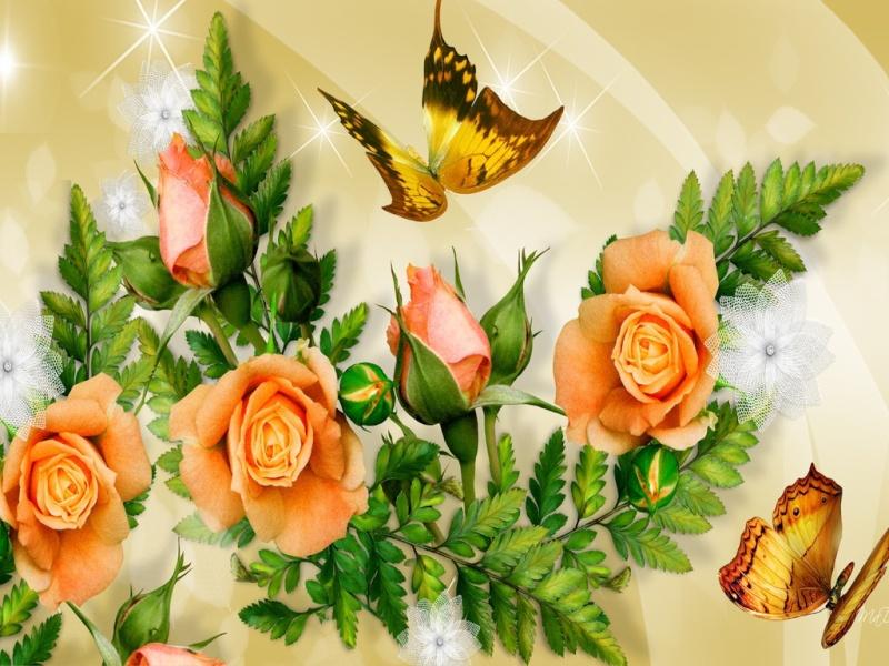 Belles Images 10145611