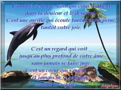 Poèmes d' Amitié 17729810