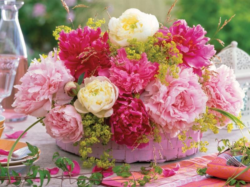 Belles Images 31583810