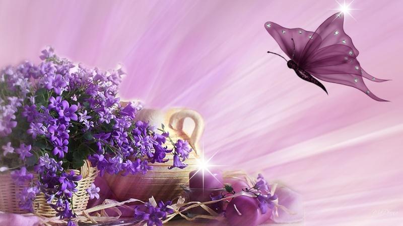 Belles Images 65135210