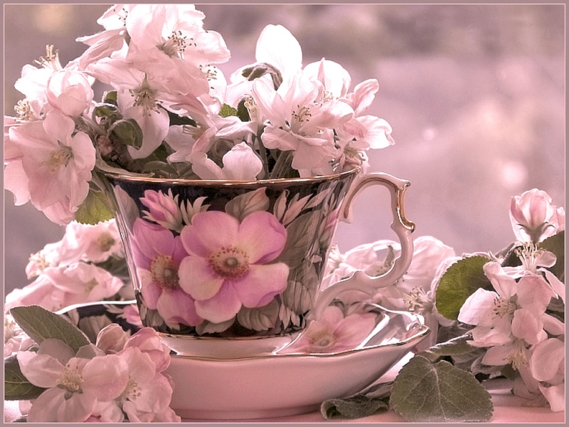 Belles Images 98710110