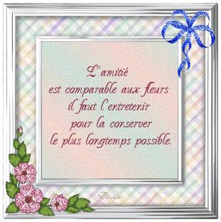 Poèmes d' Amitié Amitie10