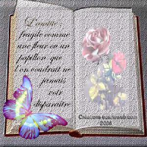 Poèmes d' Amitié Poeme210