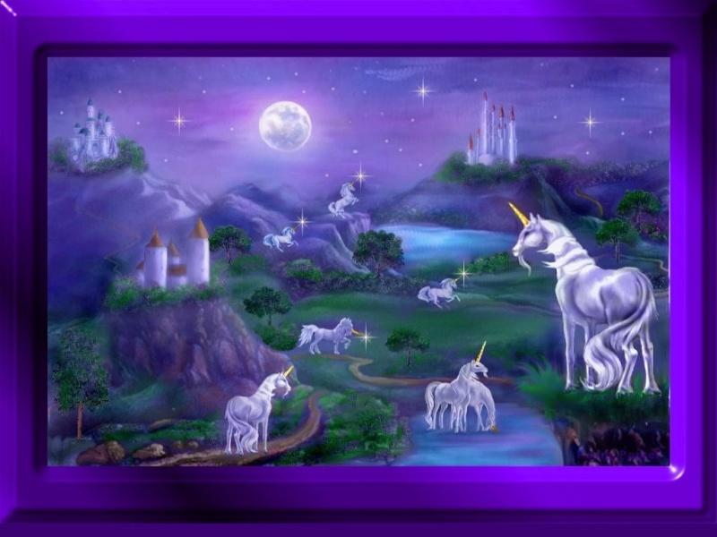 Belles Images Untitl24