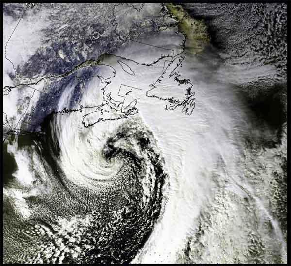 Les Cyclones  Whitej10