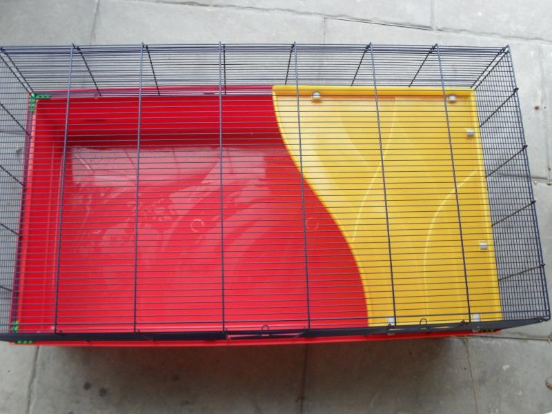 Cage Imac 100   (bas-rhin) Sam_3710