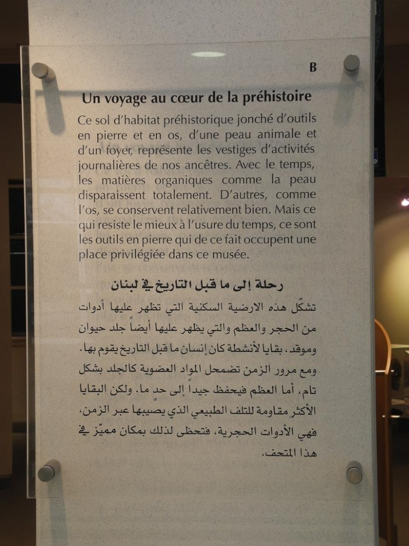 Musée de Préhistoire Libanaise Pannea10