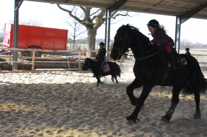 "Concours : ""cheval au galop"" GAGNANTE : TItâne Photo_25"