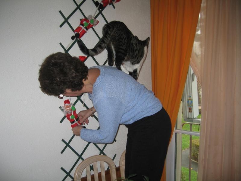 Lily et les décorations de Noël Img_3516