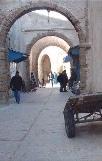 Balade à Chbanates Al-1110